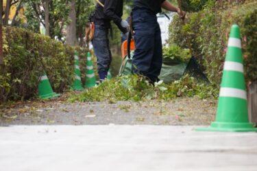 造園業界に関係する資格はたくさん!いったいどんな資格がある?